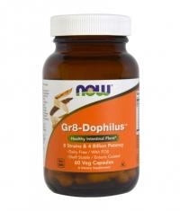 NOW Gr8 - Dophilus / 60 Vcaps.