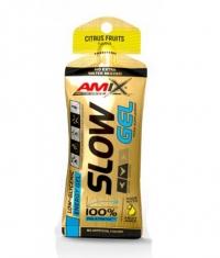 AMIX SLOW Palatinose™ Gel / 45g