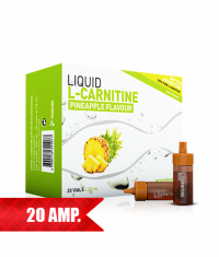 BODYRAISE NUTRITION Liquid L-Carnitine / 20 Fiole.