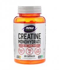NOW Creatine Monohydrate 750mg. / 120 Tabs.