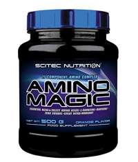 SCITEC Amino Magic 500g.