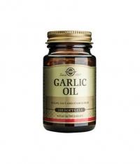 SOLGAR Garlic Oil  100 Caps.