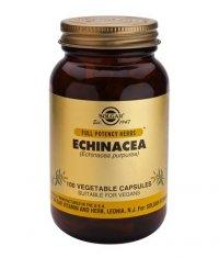 SOLGAR Echinacea  100 Caps.