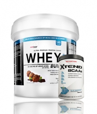 PROMO STACK Everbuild Whey Build 10 Lbs. / SCIVATION Xtend Intra-Workout Catalyst! /New Formula/ 30 Servs.
