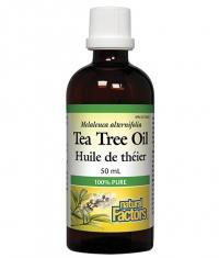 NATURAL FACTORS Tea Tree Oil / 50ml